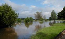 Photographies de crue à La Pommeraie-sur-Sèvre